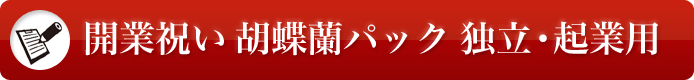 開業祝い 胡蝶蘭パック